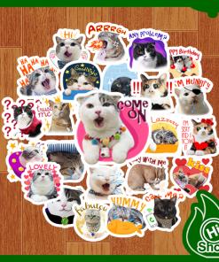 Hình Dán Sticker Vương Quốc Mèo Tiểu Hổ